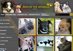 Rescue-the-Animals